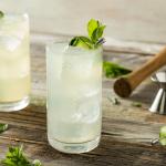 Gin Fizz Cocktail Recipe